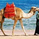 Egypt-Holiday in Egypt tourism destinations
